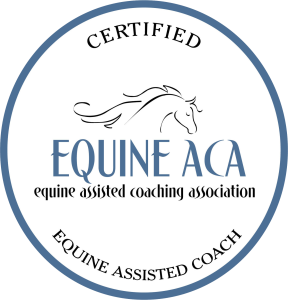 Certified Equine Assisted Coach